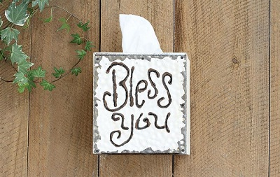 """BLESS You"" Tissue Box"